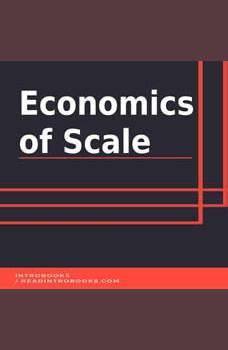 Economics of  Scale, Introbooks Team