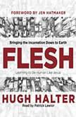 Flesh Bringing the Incarnation Down to Earth, Hugh Halter