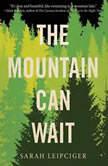 The Mountain Can Wait, Sarah Leipciger